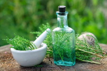 Fles jeneverbesinfusie of drankje, mortier en Juniperus communis takjes. Kruiden- en homeopathische medicijnen.