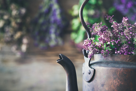 Vintage rustic tea kettle full of thyme flowers for healthy herbal tea. Hanging medicinal plants on background. Herbal medicine.