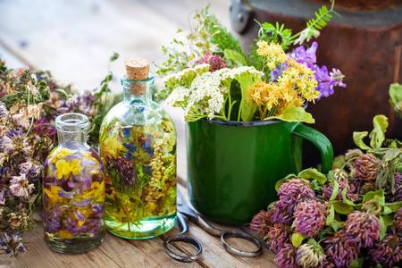 elixir: Taza esmaltada de hierbas curativas, vieja caldera de té, botellas de tinte herbario o aceite y plantas medicinales para el té herbario sano. Medicina herbaria.