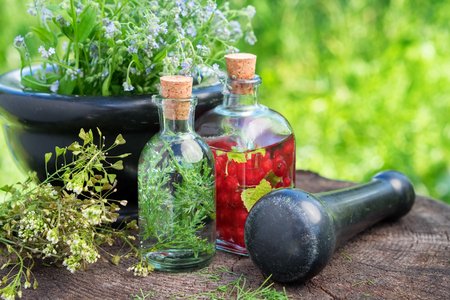 Mortar of healing herbs, bottles of herbal tincture, healthy infusion and medicinal plants. Herbal medicine.