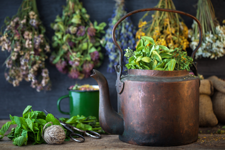 Vintage copper tea kettle, medicinal plants for healthy herbal tea and hanging healing herbs. Herbal medicine. Stock Photo