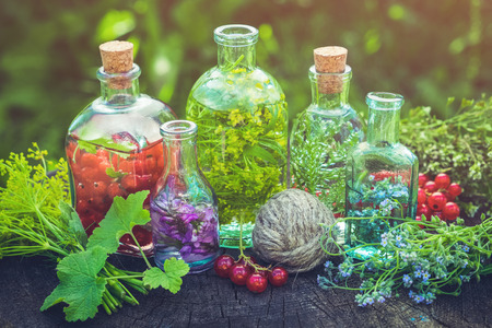 Bottles of herbal infusion, healthy tincture and healing herbs outdoors. Herbal medicine.