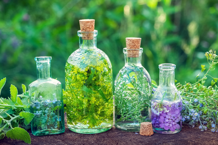 Bottles of herbal infusion and healing herbs outdoors. Herbal medicine. Stock Photo