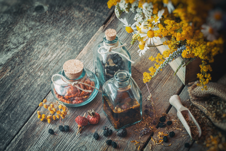 Bottles of tincture, berries and dry medicinal herbs, herbal medicine.