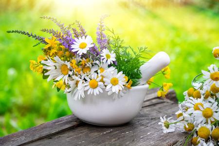Mortar of medicinal herbs and daisy healing herbs bunch outdoors. Herbal medicine.