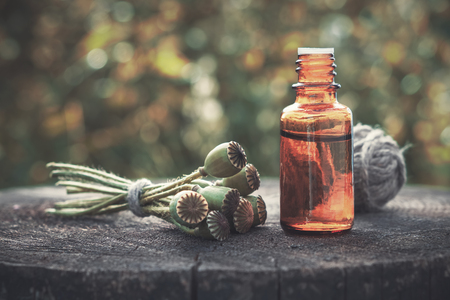 Poppy flower heads and bottle of infusion. Herbal or homeopathic medicine. Stock Photo