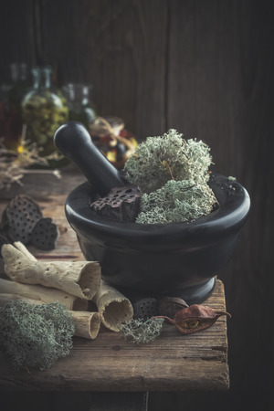 Mortar of dried moss and lotus, dry roots, nuts and plants on old table. Stock Photo