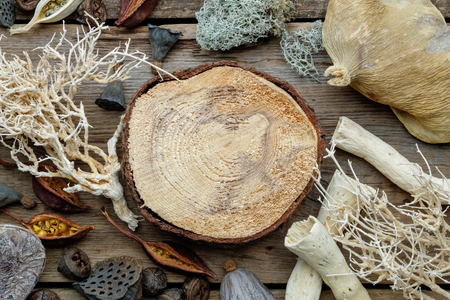 Wooden stump, dried roots, nut shell, coconuts, dry plants, eucalyptus, lotus seeds for floristic design on old wooden board. Top view.