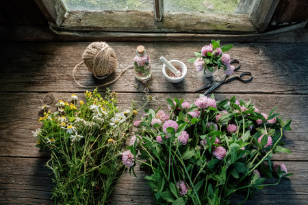 Pink clover, daisies and hypericum flowers, mortar, clover tincture or infusion, scissors and jute on old wooden table inside the retro village house. Top view.