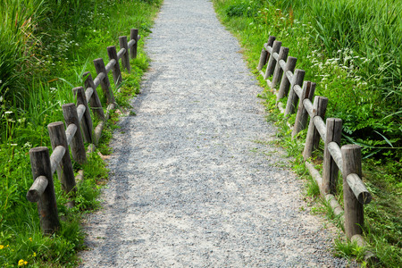 Walking path with a wooden fence.