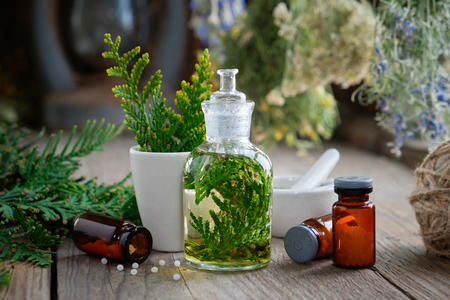 Bottles of homeopathic globules, Thuja infusion, Thuja occidentalis plant and mortar. Homeopathy medicine.