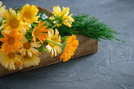 Healthy calendula or marigold flowers. Medicinal herbs in wooden crate. 免版税图像