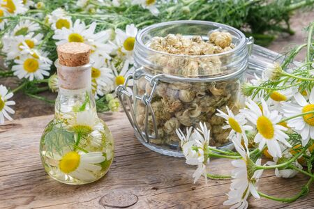 Daisy infusion or tincture bottle, Chamomile flowers, glass jar of dry daisy buds.