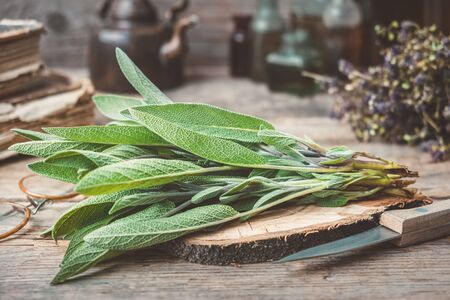 Fresh sage, medicinal herbs, books, tea kettle and glass bottles of essential oil and tincture
