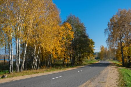 Autumn scene with road in forest near lake. Braslav, Belarus.