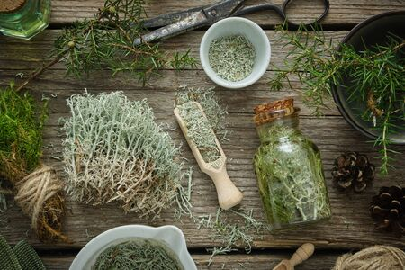 Healthy tincture of moss, mortar of dried moss, lichen and juniper plants on wooden board. Herbal medicine.