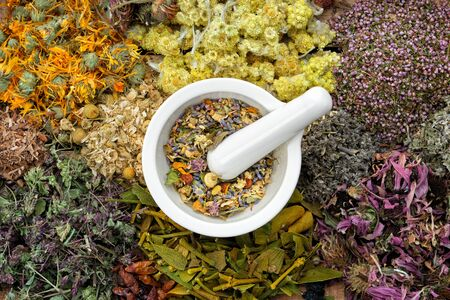 Healing herbs and mortar of medicinal herbs - thyme, coneflower, marigold, daisies, helichrysum flowers, heather, mistletoe. Herbal medicine, top view. Фото со стока - 146050557