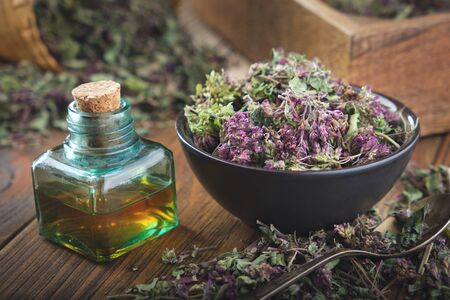 Bowl of dry Origanum vulgare or wild marjoram flowers. Bottle of essential oil or infusion. Фото со стока