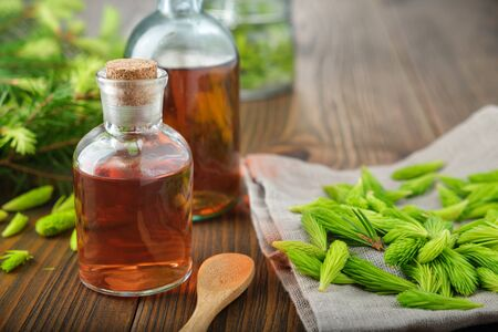 Bottles of potion, syrup or honey from fir buds and needles, twigs of fir tree on wooden table.