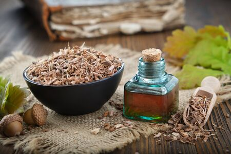 Healthy oak bark in black ceramic bowl, infusion or tincture bottle, green oak leaves and acorns on wooden table.
