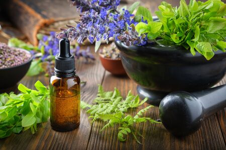 Dropper bottle of essential oil or infusion, mortar of bilberry twigs and healthy bugleherb flowers, fern leaves. Bowls of medicinal herbs and old book on background. Alternative medicine.