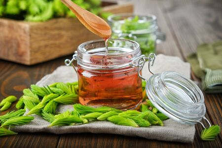 Jar of jam or honey from fir buds and needles, spoon with flowing syrup. Twigs of fir tree on wooden table. Making spruce tips jam at home.