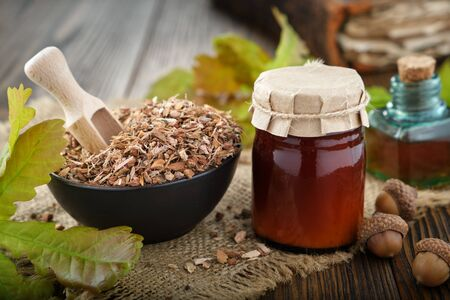 Dry healthy oak bark in black ceramic bowl, jar of salve or balm and green oak leaves and acorns on old book Фото со стока
