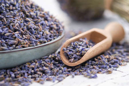 Blue plate of dried lavender. Wooden scoop of dry lavender flowers close up.