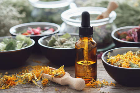 Dropper bottle of infusion or oil, bowls of dry medicinal herbs. Alternative medicine.
