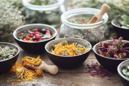 Bowls and jars of dry medicinal herbs on table. Healing herbs assortment. Alternative medicine. Stock Photo