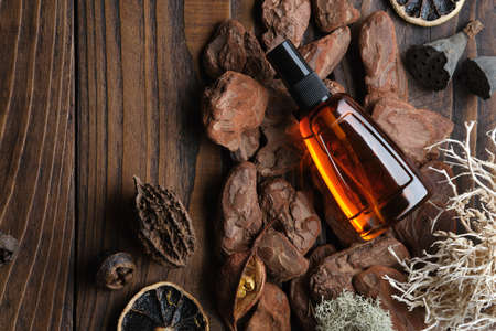 Bootle of oil, moisturizing lotion or other cosmetic product on wooden background with pine bark, moss, citrus, roots.  Mock up bottle of organic body treatment. Top view.