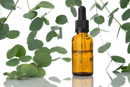 Bottle of eucalyptus oil and eucalyptus twigs on white background.