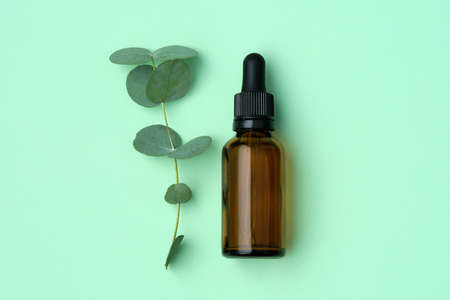 Bottle of eucalyptus oil and eucalyptus twig with leaves on green background. Top view, flat lay.