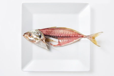 Fish-bone on dish white - symbol of misery Banco de Imagens