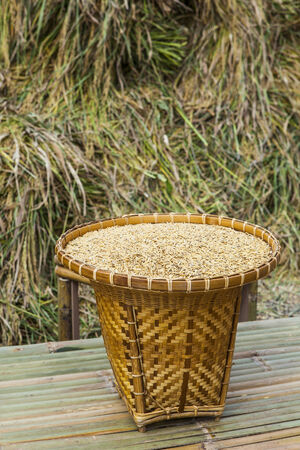 Paddy in bamboo basket on stack background   photo
