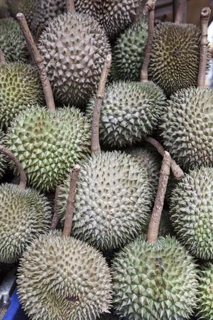 Durian Stock Photo - 16151237