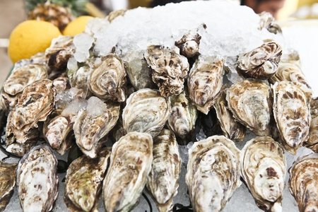 A platter of fresh raw oysters on ice at an outdoor cafe  Stock Photo
