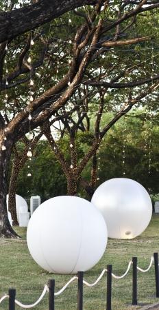 Ball ornament  Banque d'images