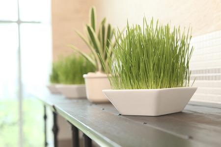 decor: grass decor