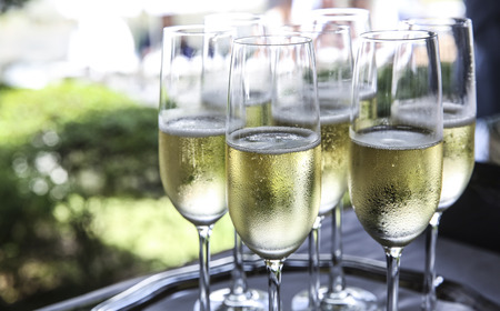 Champagner Standard-Bild - 41246395