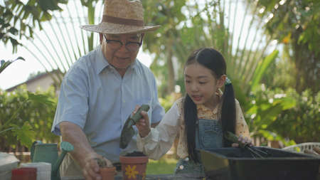Asian grandpa with child girl planting young tree in the black soil and watering it together in the garden. Two happy family gardening together and taking care of nature. People and ecology concept.