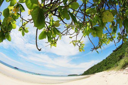 Klaren, blauen Himmel und Strand in Fisch-Auge Standard-Bild - 6716049