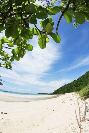 Klaren, blauen Himmel und Strand in Fisch-Auge Standard-Bild - 6715916