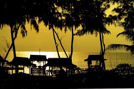 Ansicht der Palm schwarzen Konturen am Strand bei Sonnenuntergang  Standard-Bild - 6715858