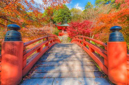 Autumn at daigoji temple,kyoto,Japan