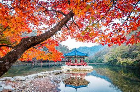 Water hall at Naejangsan National park in Autumn season
