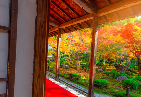 The view of autumn Japanese garden with maple Stock Photo