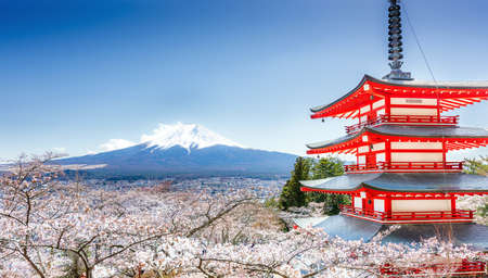 Chureito Pagoda and Mt. Fuji in the spring with cherry blossoms Stock Photo