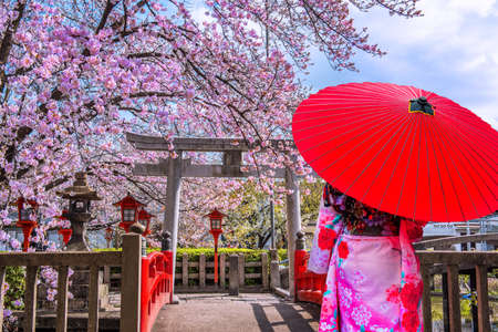 Asian woman wearing japanese traditional kimono and cherry blossom in spring, Kyoto temple in Japan