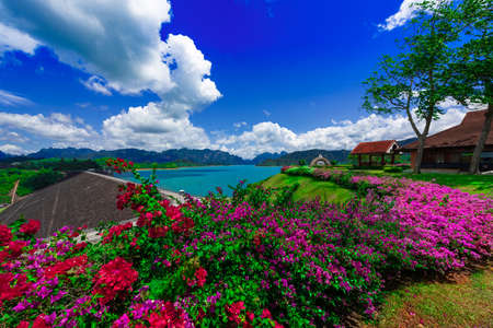 Beautiful blue sky with flower and clear water , Ratchaprapa Dam or Guilin of Thailand the famous of Nation Park in Suratthani, Thailand. Foto de archivo